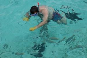 Franco tra i pesci 1, Taj Coral Reef