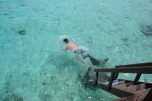 franco mentre fa snorkeling 2, Taj Coral Reef